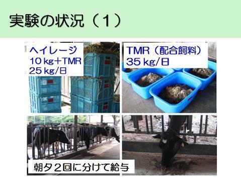 lab_06_49_5.jpg