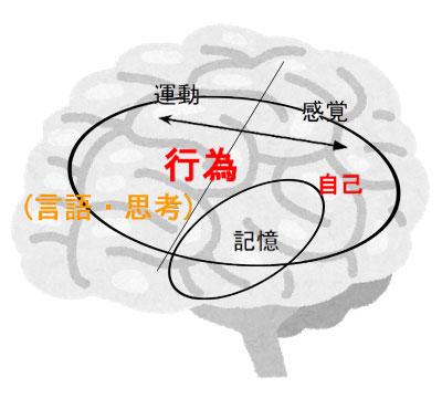 report_02_264_01.jpg