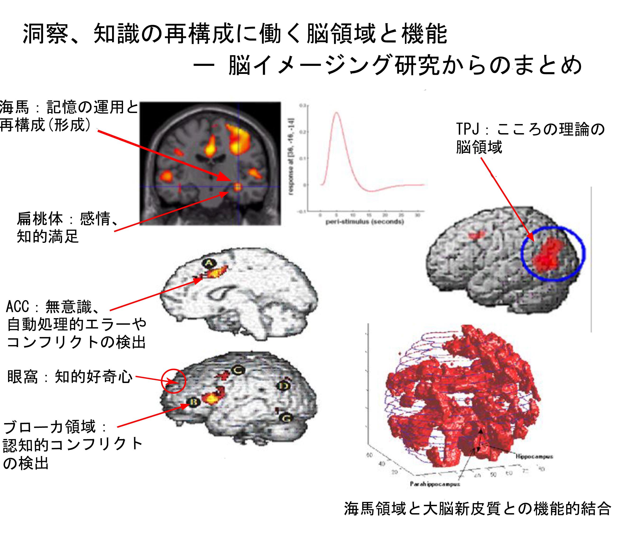 report_02_264_02.jpg