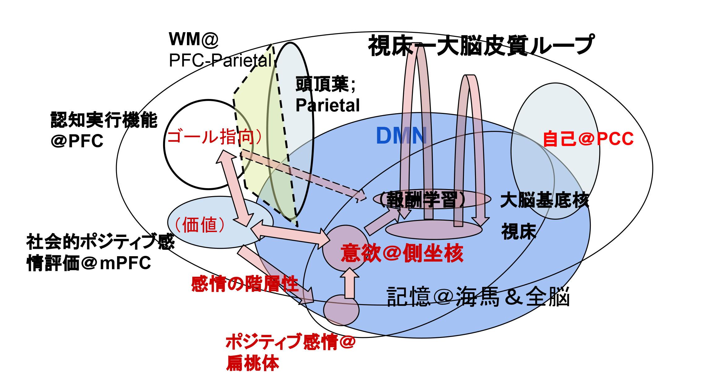 report_02_264_03.jpg