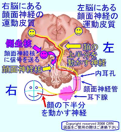 report_04_28_1.jpg