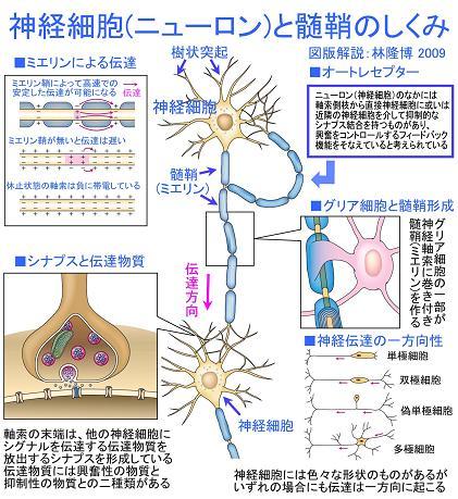 report_04_47_1.jpg
