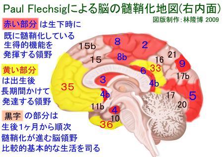 report_04_49_3.jpg