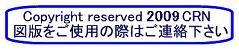 report_04_51_2.jpg