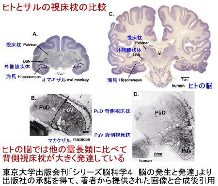 report_04_55_5.jpg