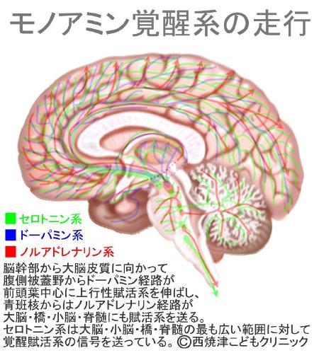 report_04_61_2.jpg