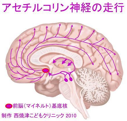 report_04_62_2.jpg