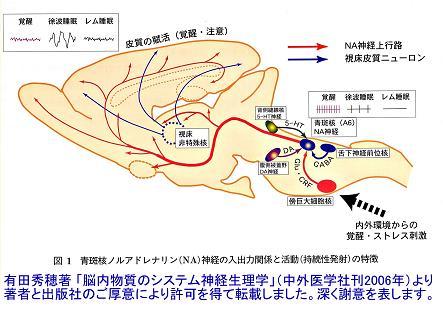 report_04_63_1.jpg