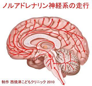 report_04_63_2.jpg