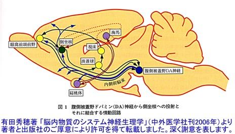 report_04_65_1.jpg
