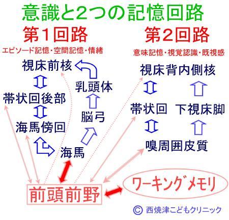 report_04_66_2.jpg
