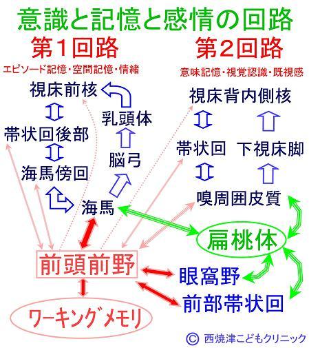 report_04_74_3.jpg